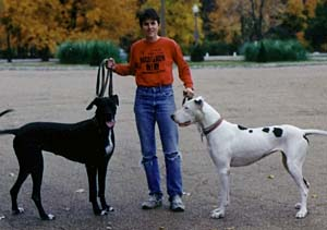 Carol North with her Great Danes in Tower Grove Park.