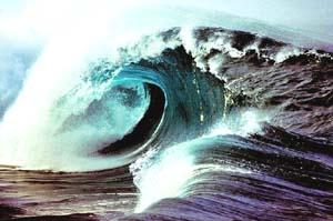 ...when a tsunami strikes.