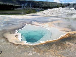 A hot spring at old faithful in Yellowstone National Park, Wyoming. A WUSTL scientist suggests that Cyanobacteria arose in freshwater environments rather than in the sea.