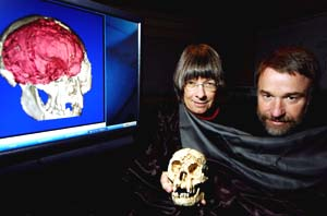 Charles Hildebolt, Ph.D. (right), associate professor of radiology, and Dean Faulk, Ph.D., professor and chair of anthropology at Florida State University, hold a cast of the skull of the