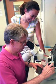 Bruce Fegley examines a meteorite while Laura Schaefer looks on.