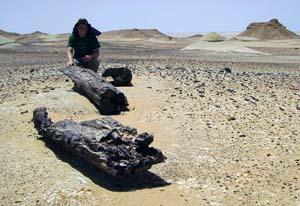 Josh Smith in the Libyan desert.