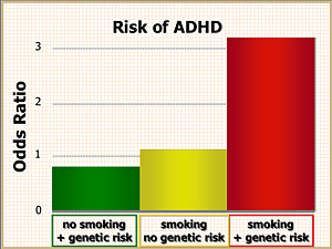 The risk of a severe type of ADHD greatly increases in children whose mothers smoked during pregnancy and who also have variants of one or two genes associated with ADHD.