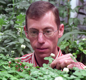 Kenneth Olsen is studying the genetics of two types of clover to determine why one type is cyanogenic (toxic) and the other is not.