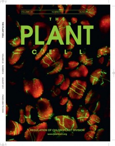 Cover of magazine The Plant Cell