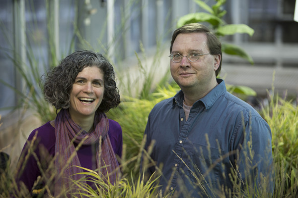 Danforth Fellowships in plant sciences announced