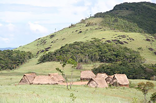 Bacterial flora of remote tribespeople carries antibiotic resistance genes | The Source | Washington University in St. Louis