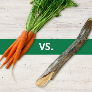Which is more effective — the carrot or the stick? Researchers at Washington University in St. Louis have devised a simple experiment to test the effects of rewards and punishments on behavior and have found that punishments seem to be more effective at influencing behavior than rewards.