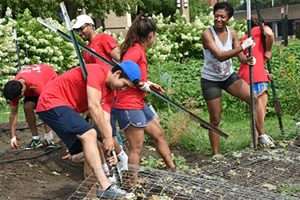 Medical students get their hands dirty volunteering in urban gardens