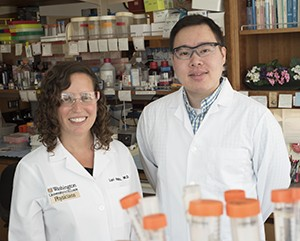 Lori Holtz, MD, (left) led a study with first author Efrem Lim, PhD, postdoctoral research associate, that surveyed the viruses present in the guts of eight babies from birth to age 2, providing a first look at a healthy gut virome.