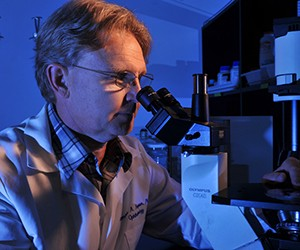 Researchers at Washington University School of Medicine in St. Louis, led by Thomas A. Ferguson, PhD, believe they may be able to stimulate a pathway in the retina to help preserve vision in patients with age-related macular degeneration and other retinal diseases.