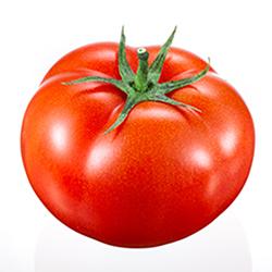 Tomato250