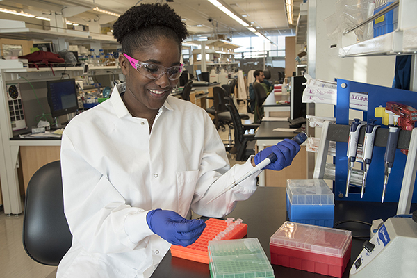 A student in the lab of 4515 McKinley Research Buidling.