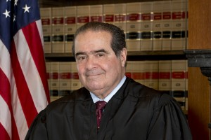 New Scalia