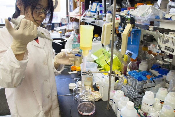 Haiyan Zhao purifies the Zika surface protein.