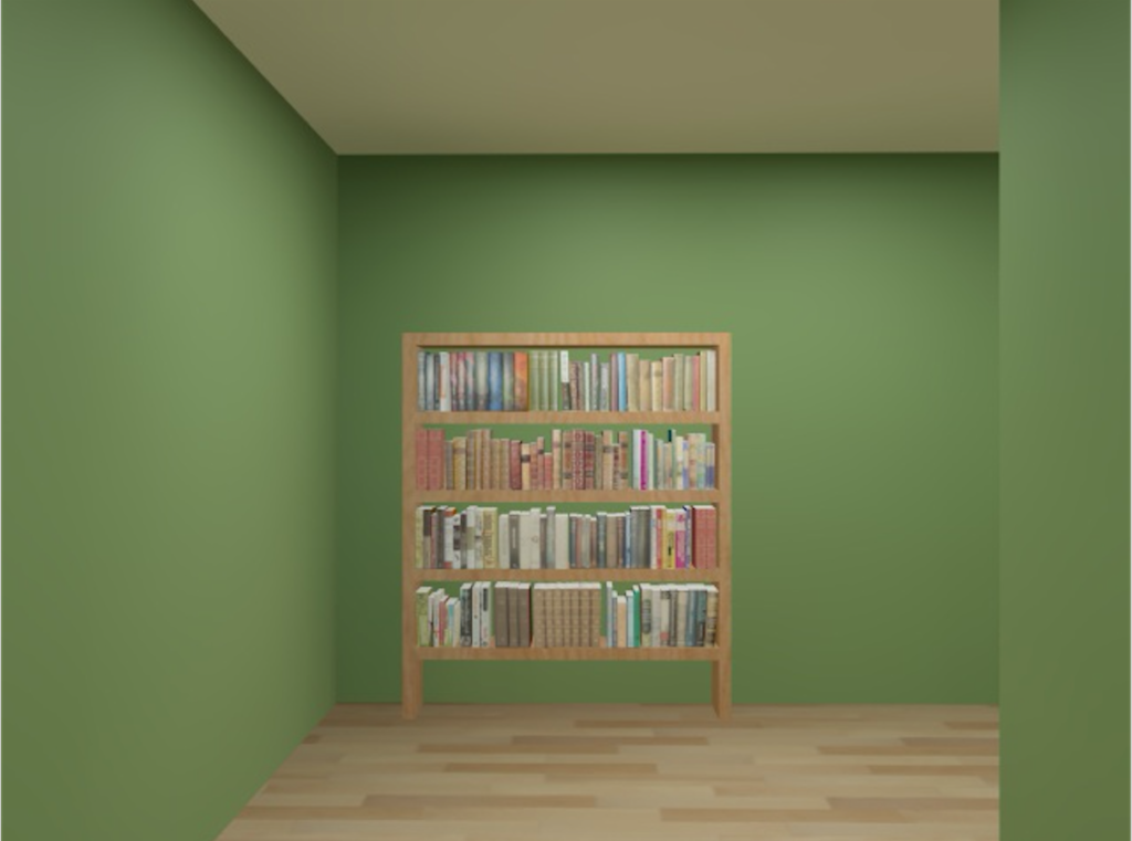 Bookshelf landmark in virtual maze