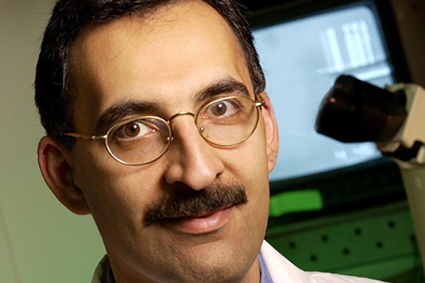 Guilak recognized for research in cartilage engineering