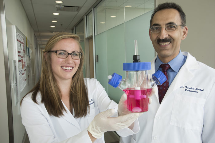 Washington University biomedical engineering PhD student Ali Ross and Farshid Guilak, PhD, a professor of orthopedic surgery, show a container with a prototype of a living hip replacement. The scientists have coaxed stem cells to grow into new cartilage on a 3-D template shaped like the ball of a hip joint. (Photo: Robert J. Boston/School of Medicine)