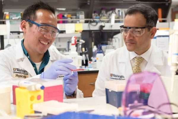 MD/PhD student Jonathan Lin (left) and Rajendra S. Apte, MD, PhD, of Washington University School of Medicine in St. Louis, have identified a pathway involved in photoreceptor death in the retina. They also have found a way to reverse damage to those cells, potentially providing a treatment strategy for blinding diseases such as retinitis pigmentosa. (Robert Boston/School of Medicine)