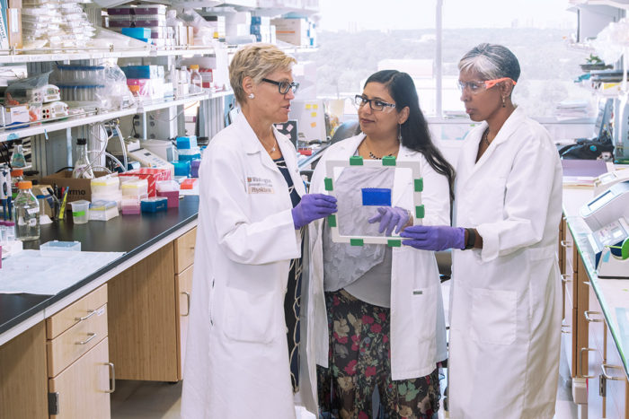 Washington University School of Medicine in St. Louis has formed a new center to address important clinical problems and train scientists from around the world in obstetrics/gynecology, women's infectious diseases, and men's and women's reproductive health. From the left are Kelle Moley, MD, director; Indira Mysorekar, co-director; and Sarah England, co-director. (Photo: Robert Boston/School of Medicine)