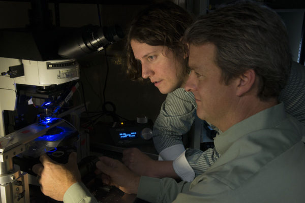 Michael R. Bruchas (left), and Robert W. Gereau IV analyze the effects of light on nerve cells from mice. As part of a new grant, the researchers will work with collaborators to use light-sensitive proteins from animals to create receptors on brain cells that can be turned on or off with light. (Robert Boston/School of Medicine)