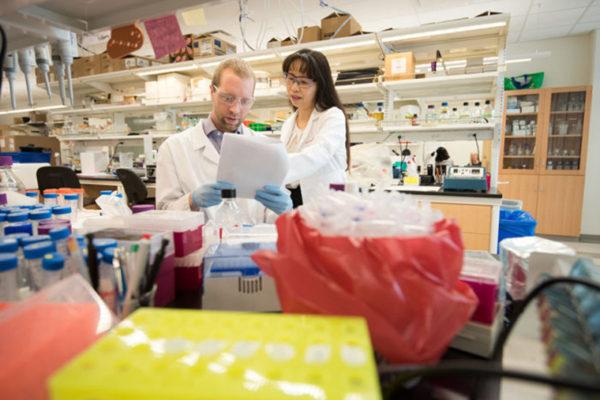 Li Ding works in her lab