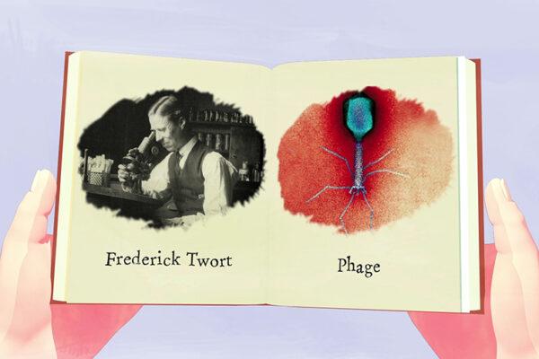 Phage: friend orfoe?