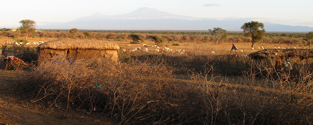 temporary Maasai homestead