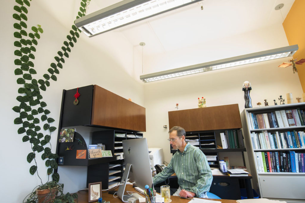 biologist's plant grows up the wall