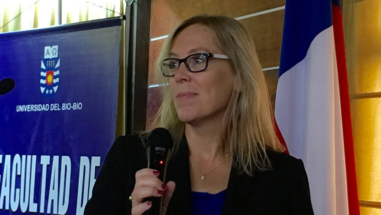 Cindy Brantmeier