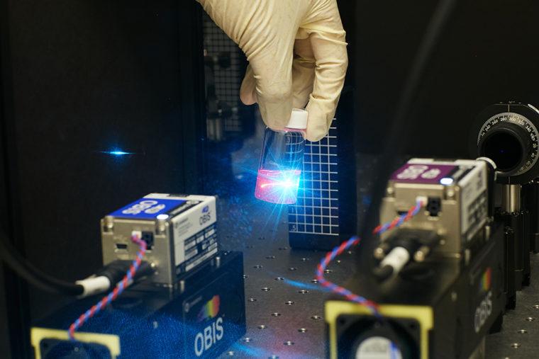 Lew Lab laser