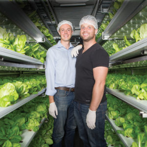 Alumni and co-founders of Local Roots Farms Eric Ellestad (left), CEO, and Matt Vail, COO, show their controlled-environment farming system inside a converted shipping container in Vernon, California. (Photo: Patrick Record)