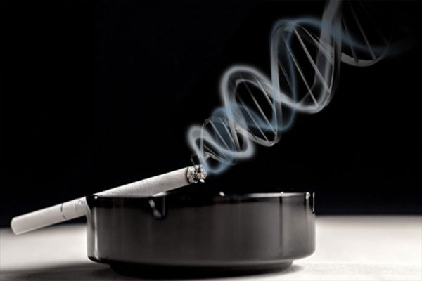 Brown School researchers begin low-income smoker study