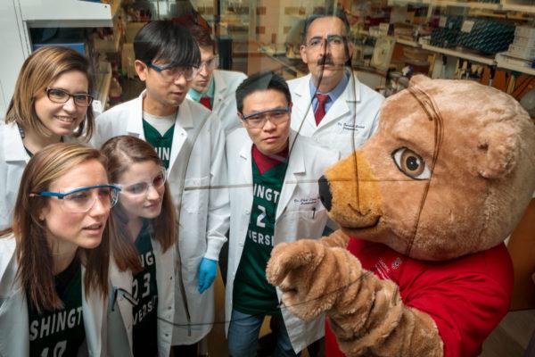 doctors and WashU Bear