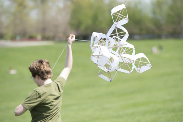 kites in Forest Park