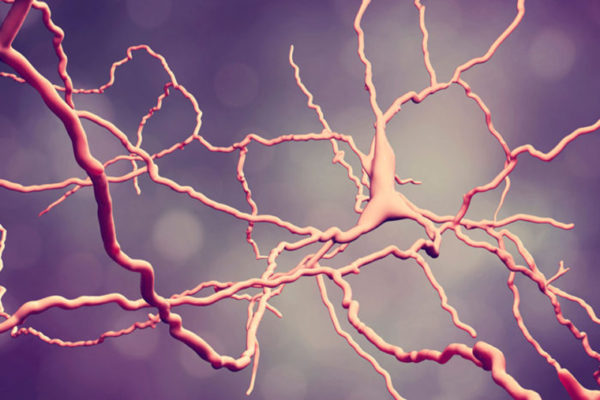 Drugs that suppress immune system may protect against Parkinson's