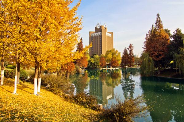 Zhang named Yangtze River Scholar