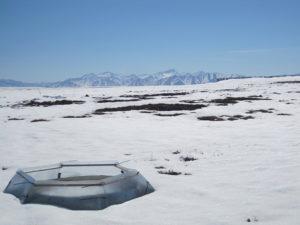 Alaska field site