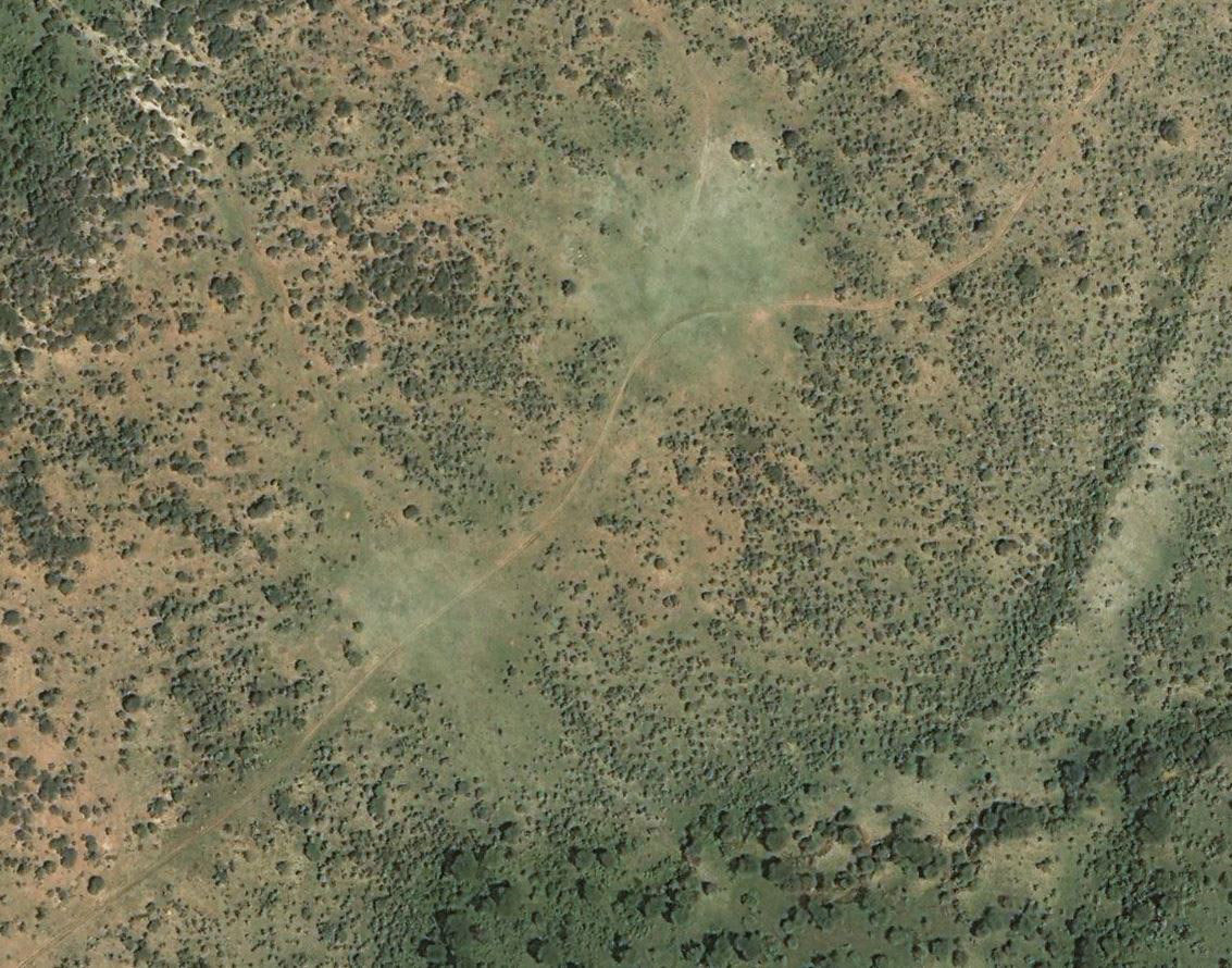 Open grassy areas with a flush of fresh green grass mark the site of ancient livestock corrals at Indapi Dapo, a Neolithic herding encampment in southwest Kenya. Imagery from Google Earth Pro, Digital Globe.