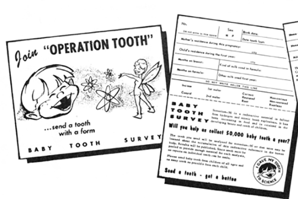baby tooth survey image