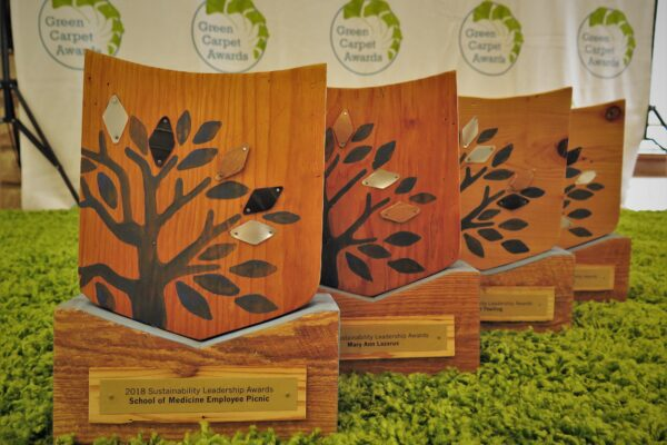 Sustainability leaders honored at Green Carpet Awards