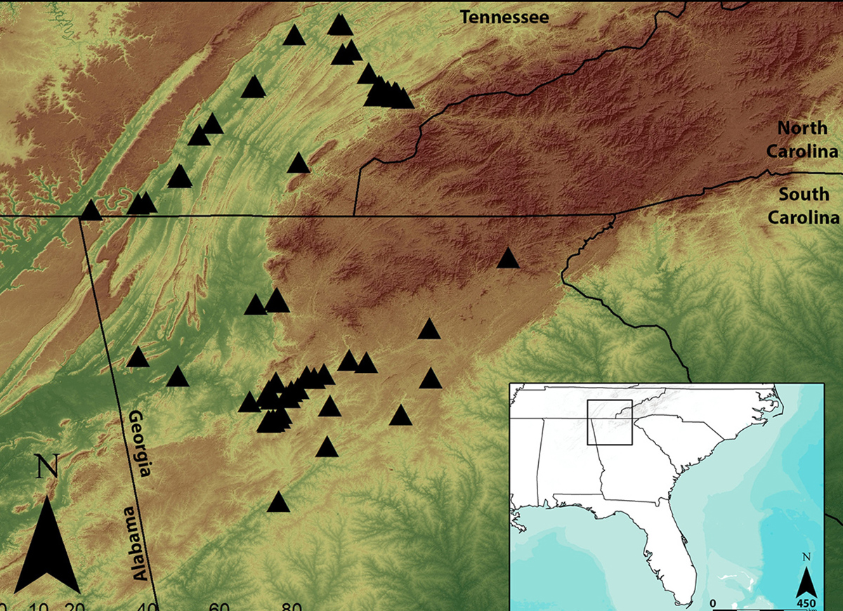 A map of the southern Appalachian region, with the archaeological sites used in this study indicated. The sites are spread across both eastern Tennessee and northern Georgia and date to the period between AD 800 and 1650. Credit: Jacob Lulewicz