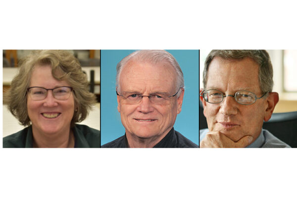 Marshall, Stormo to receive 2019 faculty achievement awards