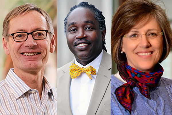 Faculty fellows to lead key areas in provost's office
