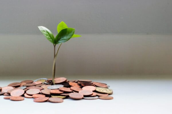 Seed grants awarded for international policy projects