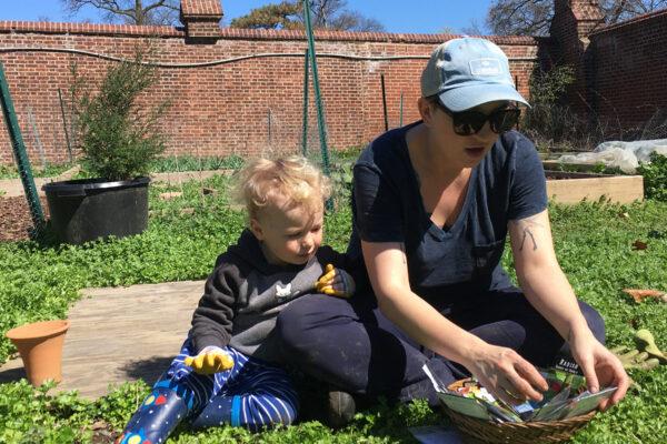 Burning Kumquat garden thrives while studentsaway
