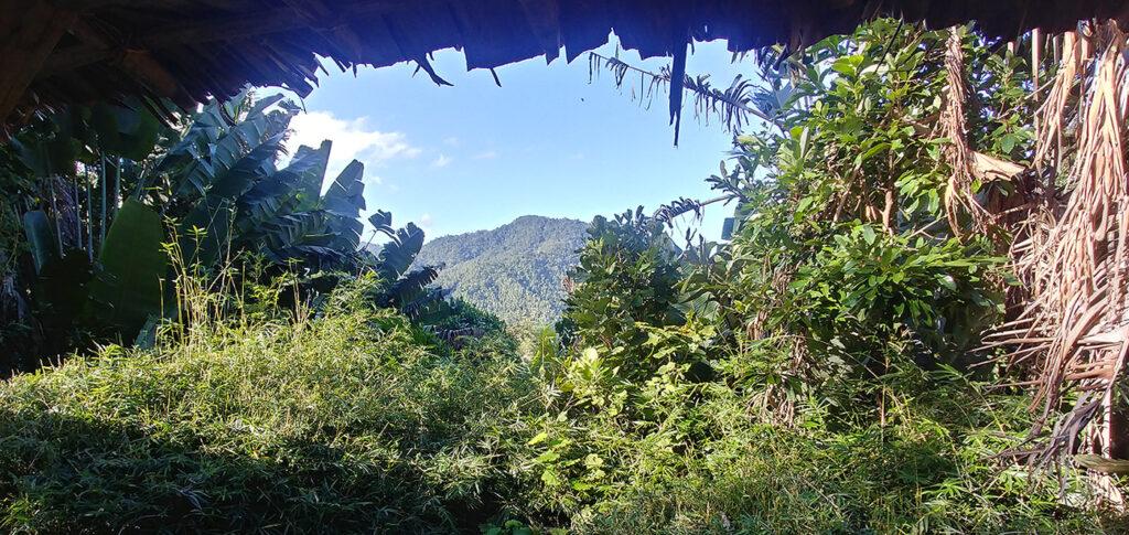 Betampona reserve