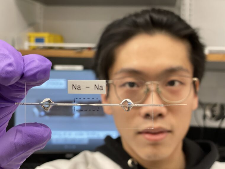Newswise: Bai lab develops stable, efficient, anode-free sodium battery