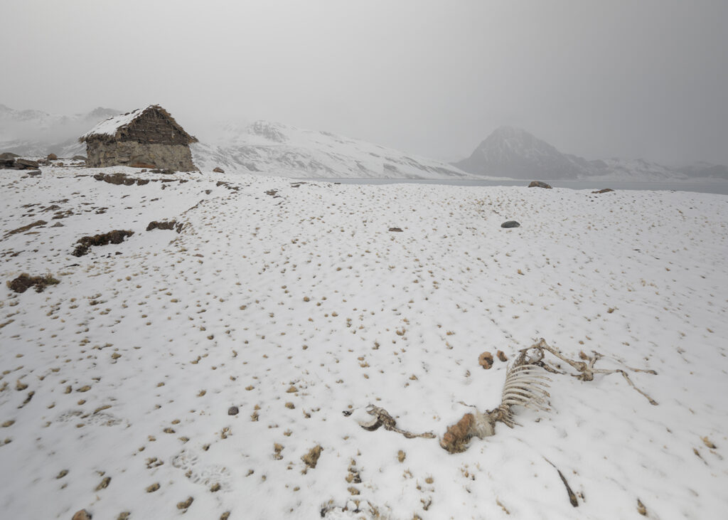 The climate is becoming more extreme and unpredictable, upending a way of life that local herders have developed over thousands of years. (Photo: Tom Malkowicz)