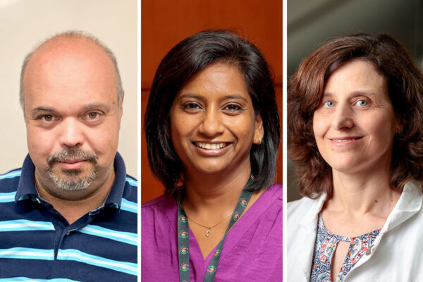 Feldman, Khader, Philips elected to American Academy of Microbiology